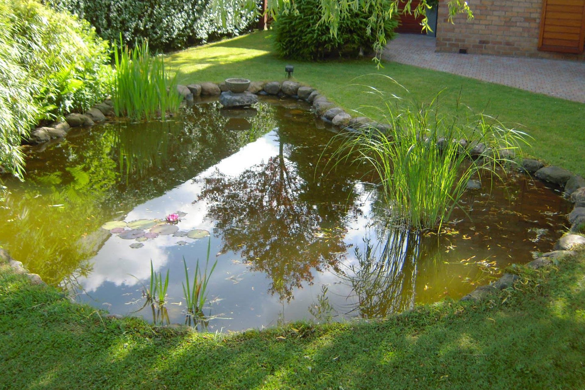 bassin2